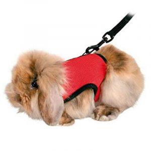 arnés para conejos de tela color rojo
